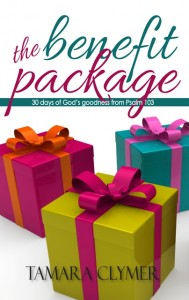 The Benefit Package book cover