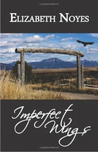 Imperfect Wings book cover