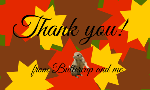 Thank you, from Buttercup and me
