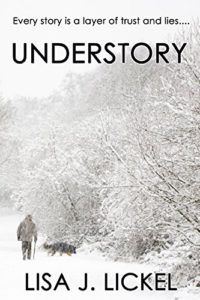 book cover UnderStory