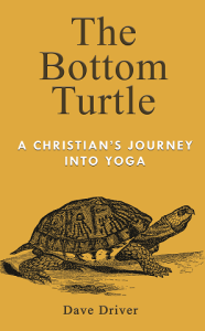 the Bottom Turtle book cover author Dave Driver